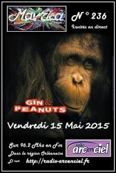 2015_05_15_Affiche_RadioArcEnCiel