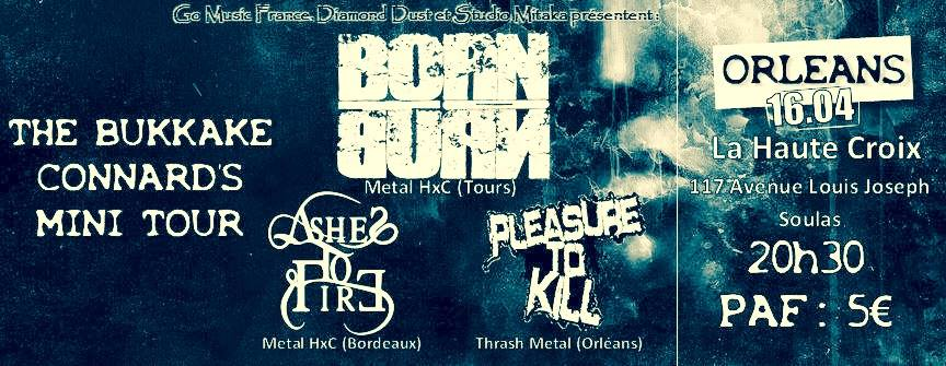 "16 avril 2016 Born To Burn, Ashes to Fire, Pleasure To Kill à Saint Jean de Braye ""Bar de la Haute Croix"""