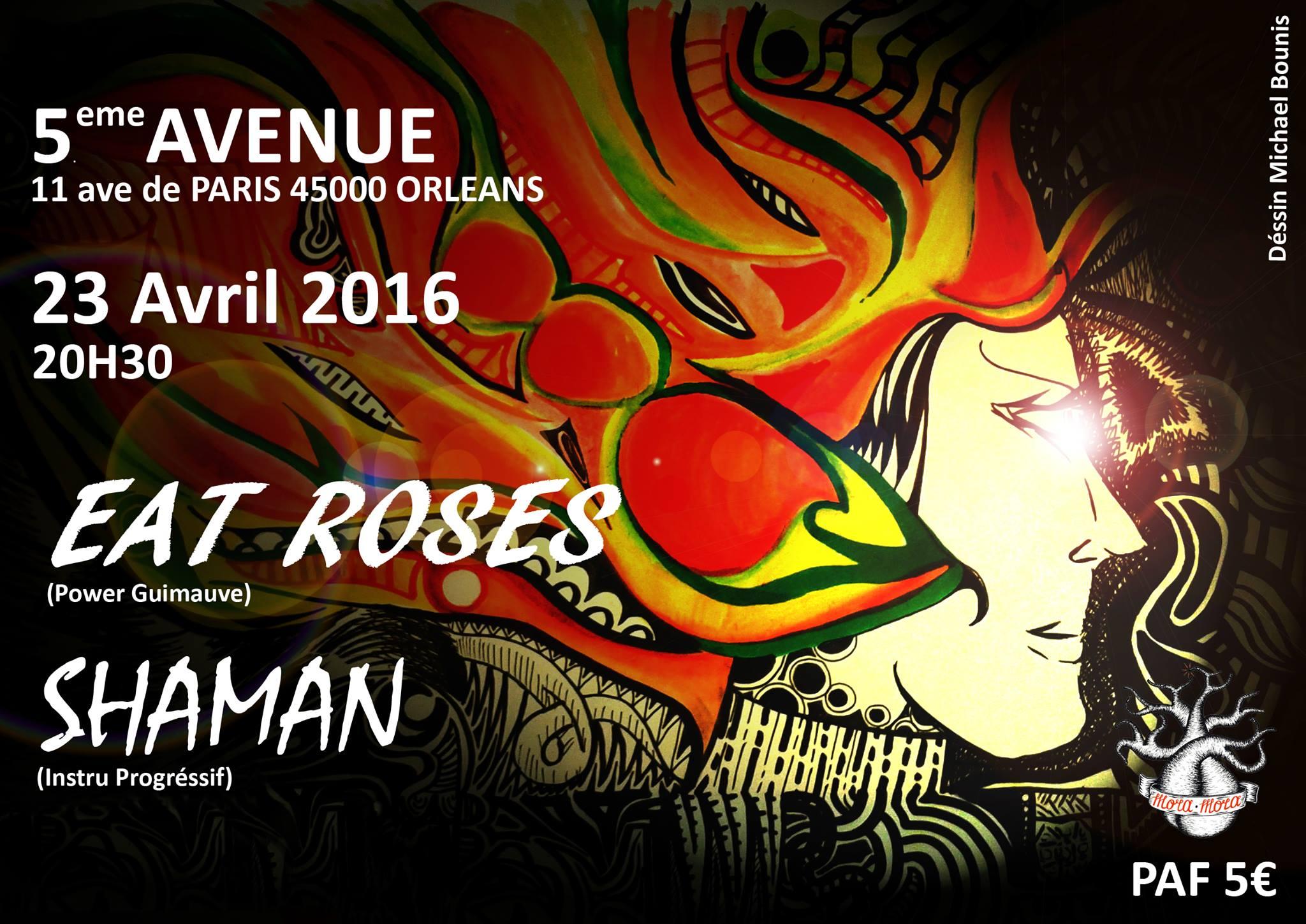 """23 Avril 2016 Shaman, Eat Roses à Orléans """"5ème Avenue"""""""