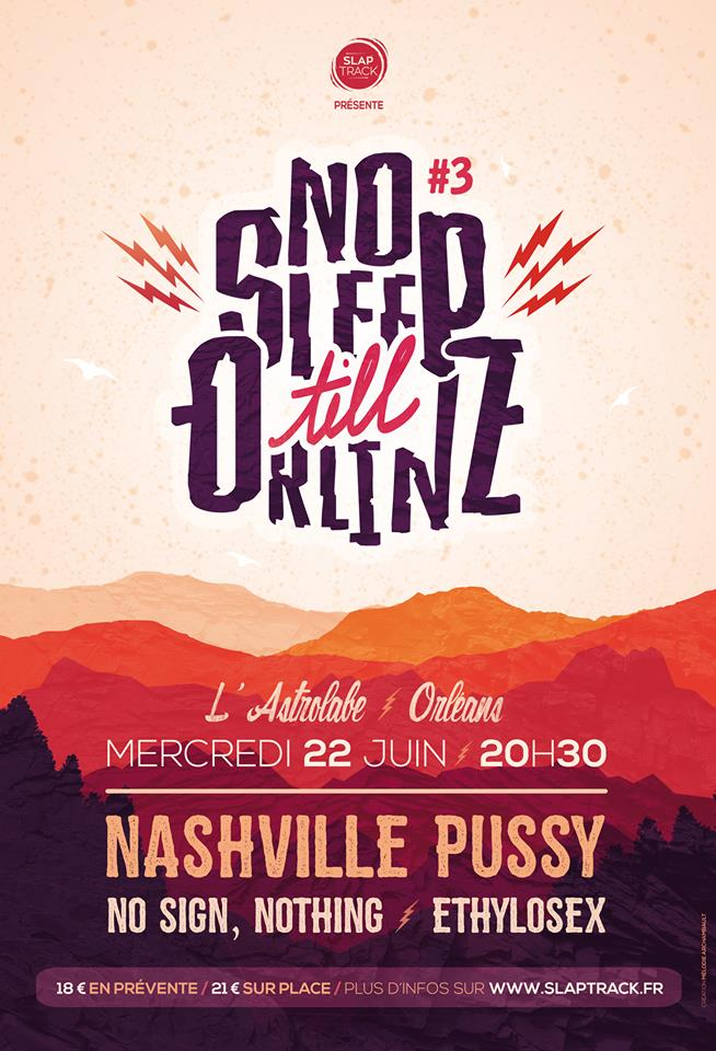 "22 Juin 2016 Ethylosex, No Sign Nothing, Nashville Pussy à Orléans ""Astrolabe"""