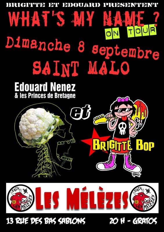 """8 septembre 2013 Edouard Nenez et le Princes de Bretagne, Brigitte Bop à Saint Malo """"Les Mélèzes"""""""
