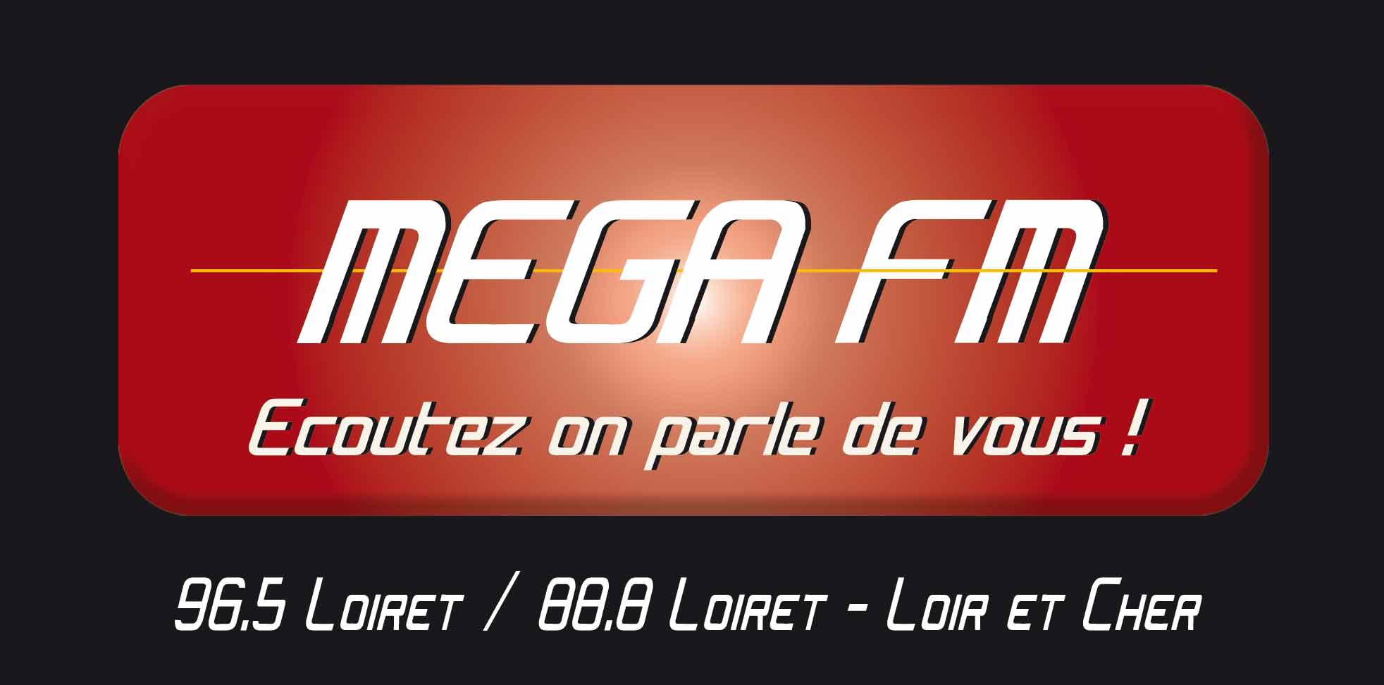2010_MEGAFM_Logo