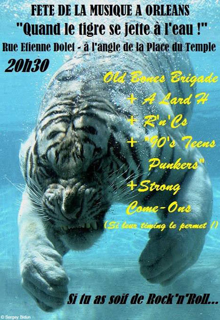 21 juin 2014 Phil Twangy & Long Tom, New York Kleps, Old Bones Brigade, A Lard H, Rnc's, 90's teens punkers, Strong Come ons à Orléans