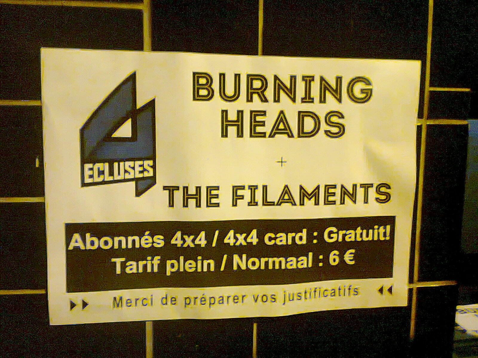 "15 mars 2013 The Filaments, Burning Heads à Dunkerque ""4 Ecluses"""