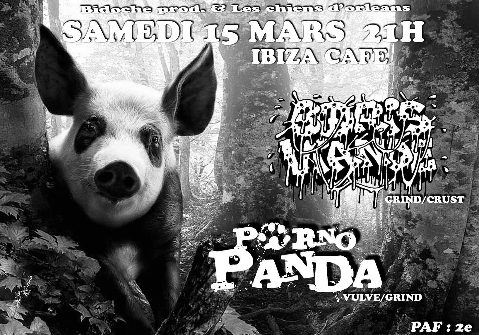 """15 mars 2014 Porno Panda, Boris Viande à Orléans """"Ibiza Café"""""""
