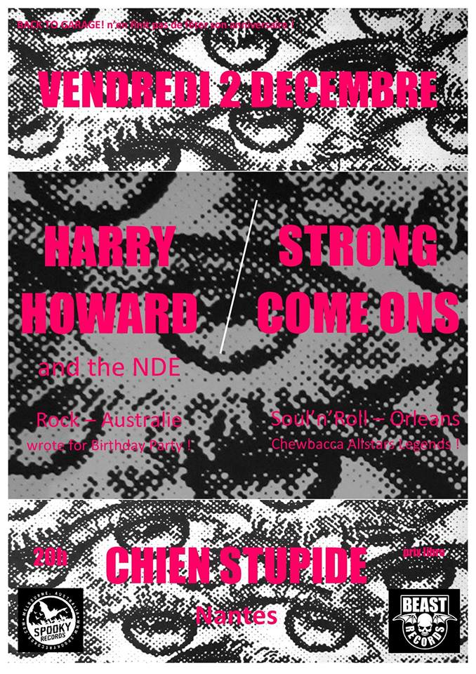"2 decembre 2016 Harry Howard and the NDE, Strong Come-ons à nantes ""Chien Stupide"""