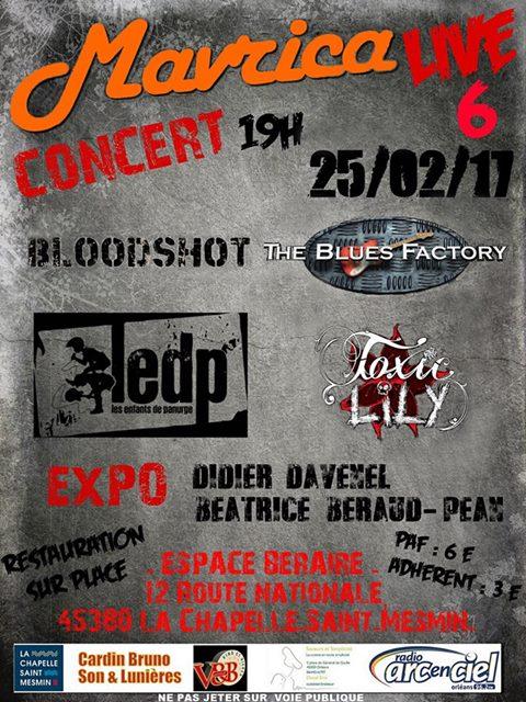 """25 fevrier 2017 Bloodshot, The Blues Factory, les Enfants de Panurge, Toxic Lily à La Chapelle St Mesmin """"Espace Beraire"""""""