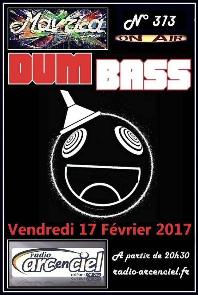 """17 fevrier 2017 Dum Bass à Fleury les Aubrais """"Mavrica"""""""
