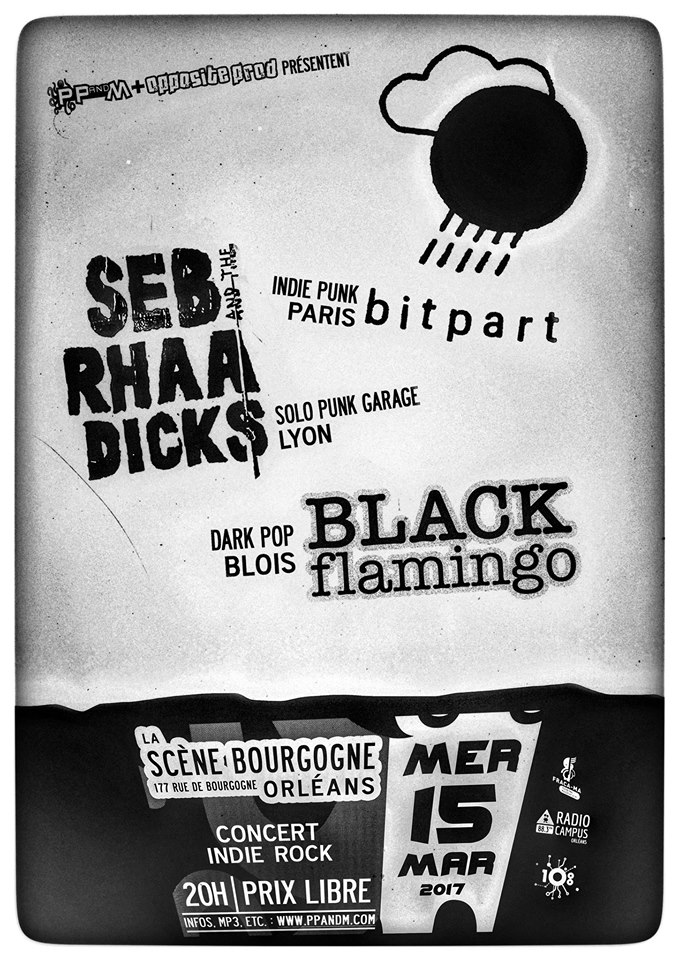 "15 mars 2017 Bitpart, Seb & the Rhaa Dicks, Black Flamingo à Orléans ""La Scene Bourgogne"""