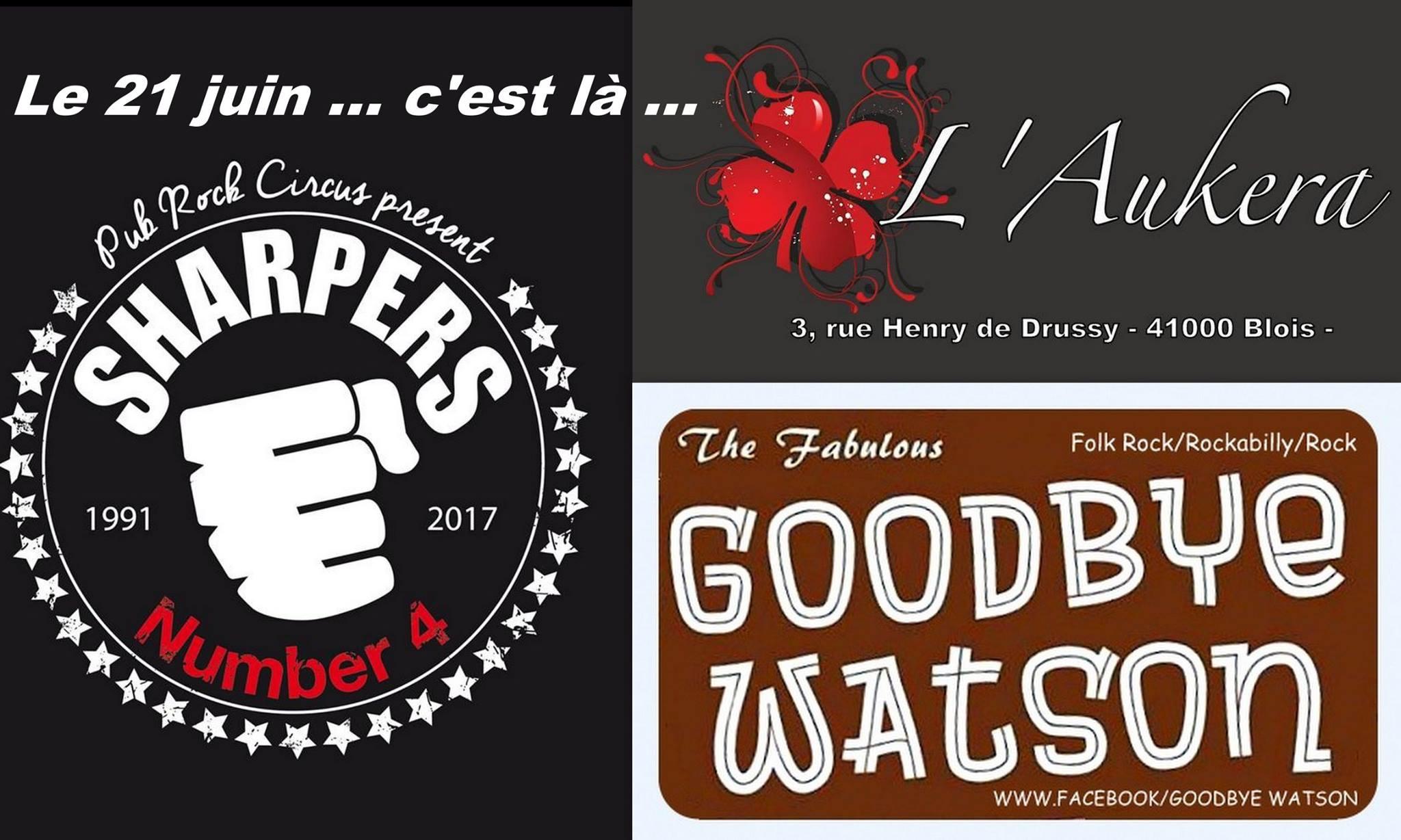 "21 juin 2017 Goodbye Watson, Sharpers à Blois ""l'Aukera"""