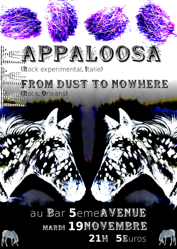 "19 novembre 2013 Appaloosa, From Dust To Nowhere à Orléans ""5ème Avenue"""