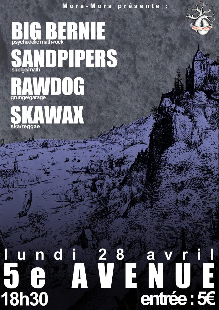 """28 avril 2014 Sandpipers, Big Bernie, Rawdog, Skawax à Orléans """"5ème Avenue"""""""