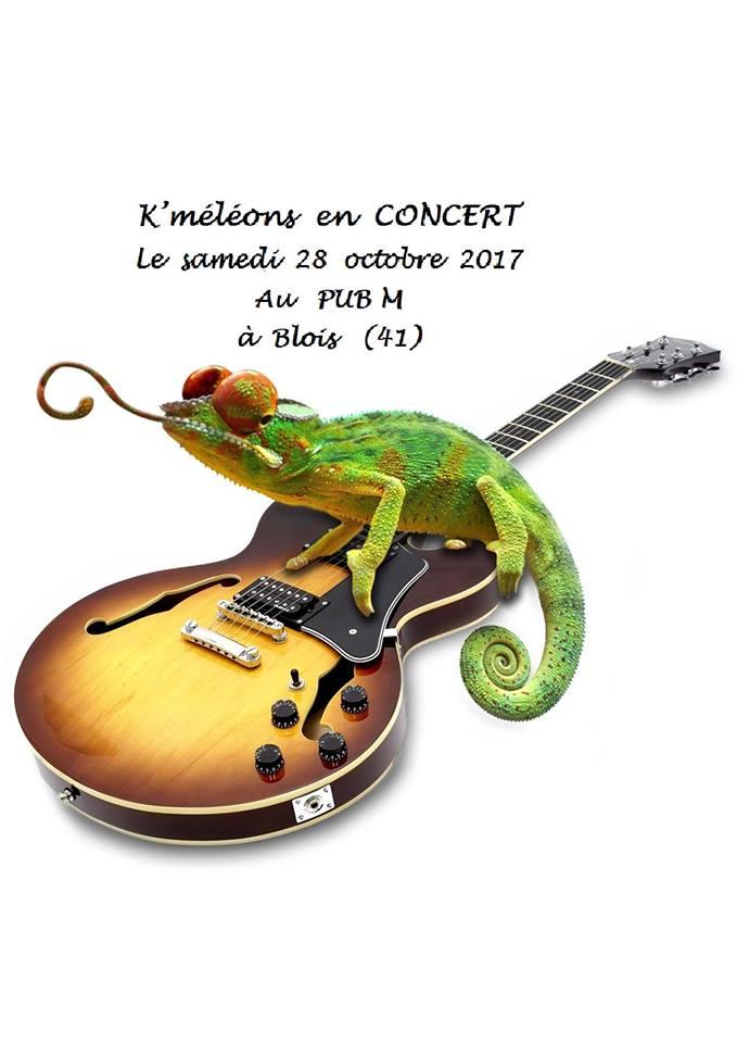 "28 octobre 2017 K'meleons à Blois ""Pub M"""