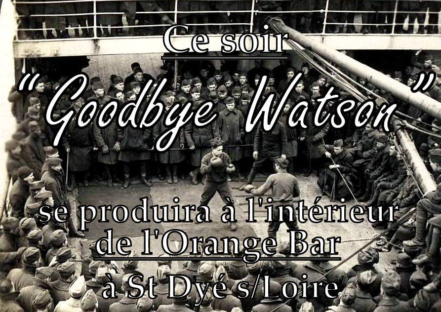 "9 juin 2018 Goodbye Watson à Saint Dyé Sur Loire ""Orange Bar"""