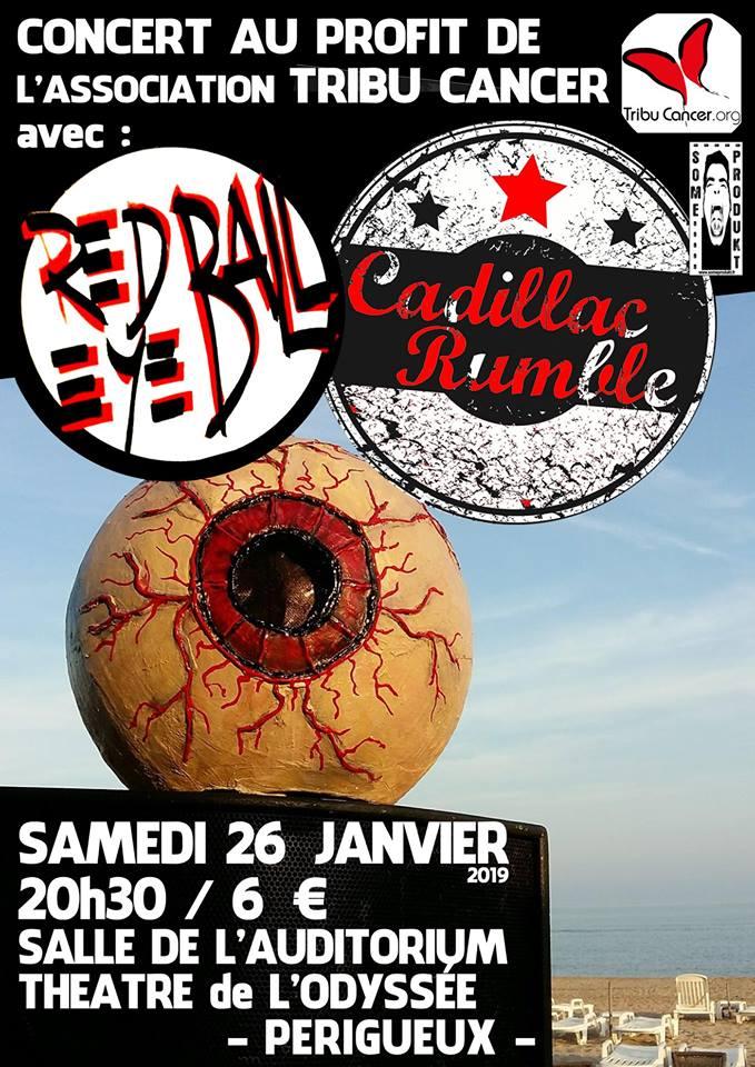 """26 janvier 2019 Red Eye Ball, Cadillac Rumble à Perigueux """"Theatre de l'Odyssée"""""""
