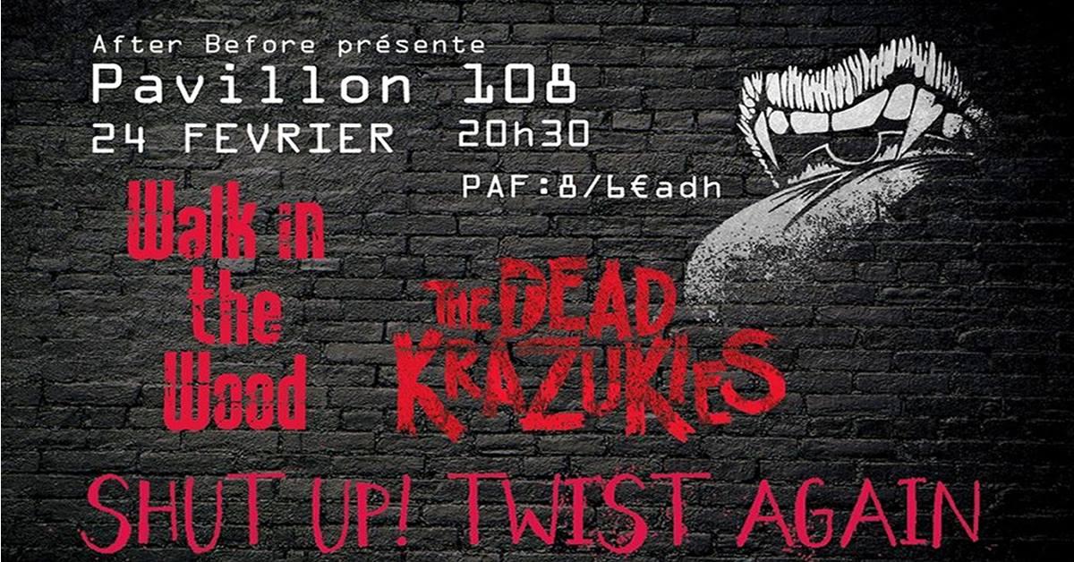"24 février 2018 Walk In The Wood, The Dead Krazukies, Shut Up ! Twist Again à Fumel ""Pavillon 108"""