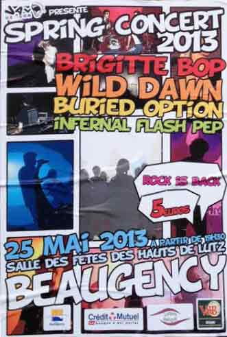 25 mai 2013 Buried Option, Brigitte Bop, Wild Dawn, Infernal Flash Pep à Beaugency